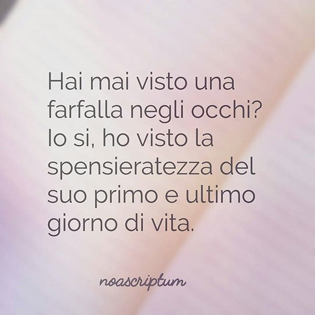 Caro Diario - #noascriptum_carodiario_ #instagram #instaquotes #instapoem #italianpoetry #italian #italianlanguage #words #quotestagram #farfalla #vita #morte #vivere #spensieratezza #butterfly #life #enjoylife #fly #volare #occhi #follow #like #quotesofthday #vivi #befree