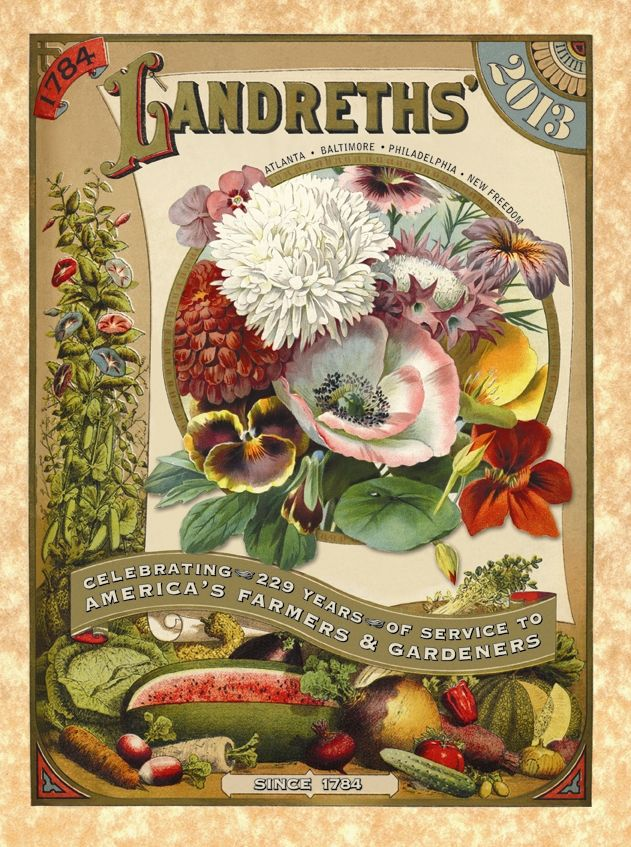 17 Best 1000 images about Vintage Seed Catalogs on Pinterest Gardens