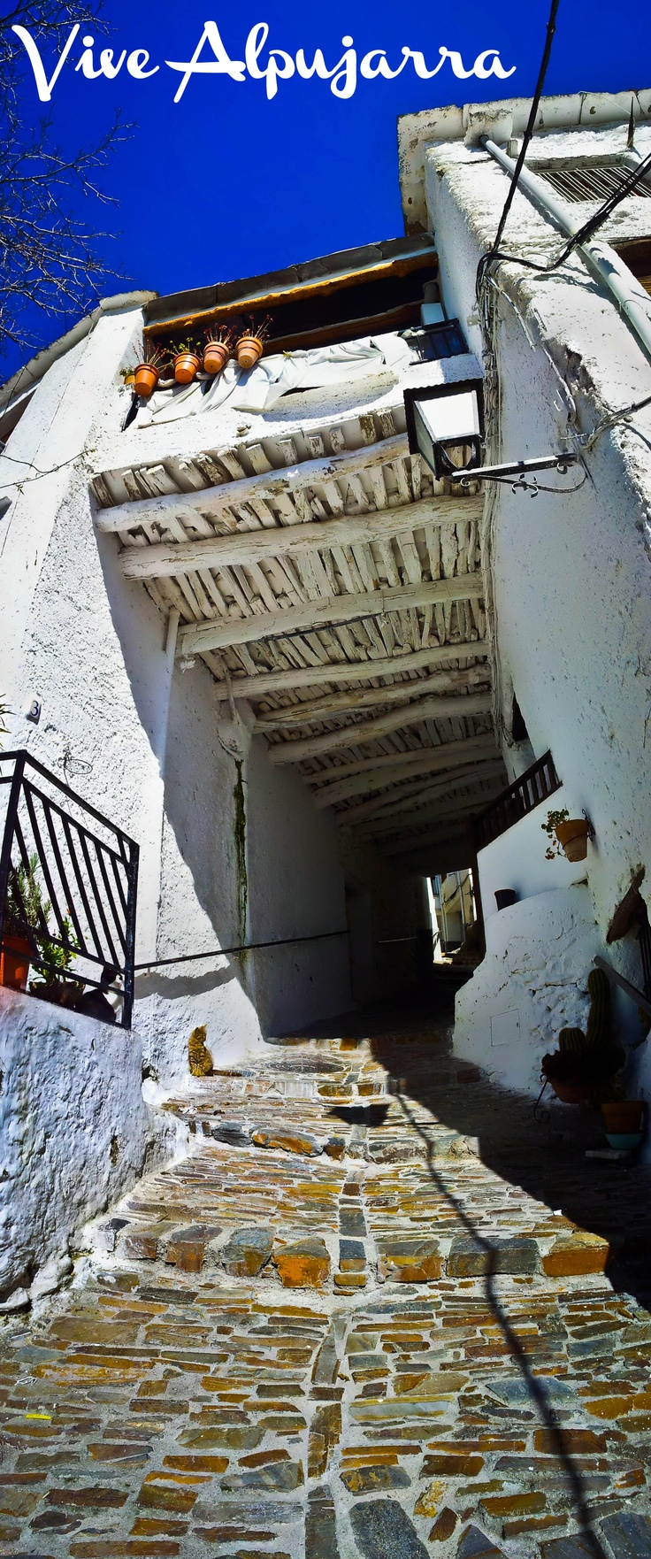Panorámica de uno de los tinaos más destacados de Pitres. Vive Alpujarra
