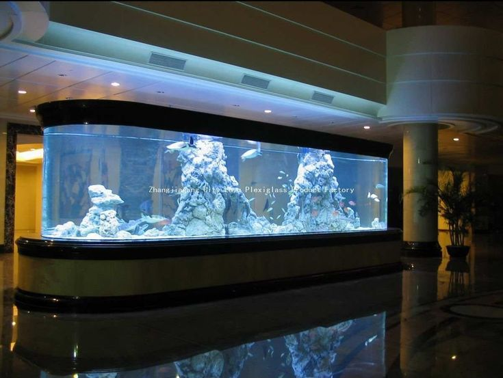 Custom giant acrylic fish tank for sale buy acrylic fish for Acrylic vs glass fish tank