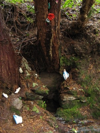 Sacred Well:  Our Lady's Well, Dromore Woods, County Kerry, Ireland.