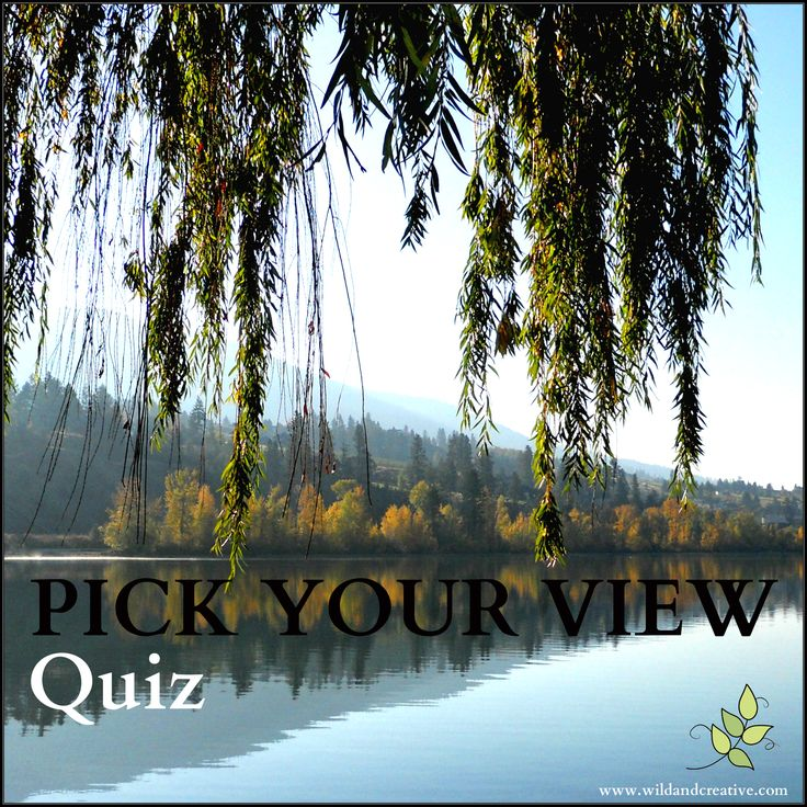 Pick Your View - Personality Quiz Click to take the free quiz! www.wildandcreative.com #personalityquiz #free
