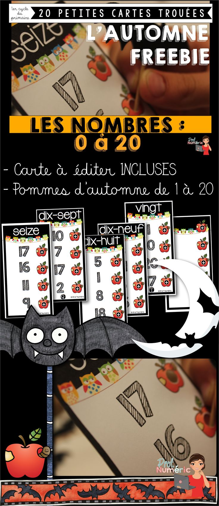 Bilingual dolphin counting card 6 clipart etc - 20 Cartes Trou Es Les Nombres De 1 20 Freebie Th Me De L