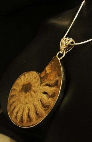 AUTHENTIC LARGE AMMONITE FOSSIL & .925 SILVER PENDANT | asterling - Jewelry on ArtFire