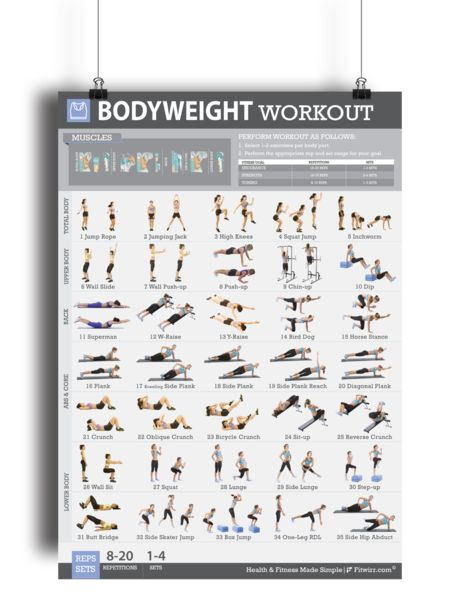 No equipment? No problem!Body-weight exercises are an indispensable part of any fitness routine, whether you are working out at home, in a apartment, hotel gym, or local gym.Our Bodyweight Workout Poster for Women will show you 35 essential exercises to work your core, abs, arms, butt, and legs. Your entire body!Presented in a clear and concise manner, each exercise has easy to follow step by- step instructions with descriptive photos outlining the proper procedure for each of the 35…