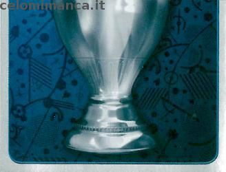 UEFA EURO 2016™ Official Sticker Album: Fronte Figurina n. 6 Trophy /2
