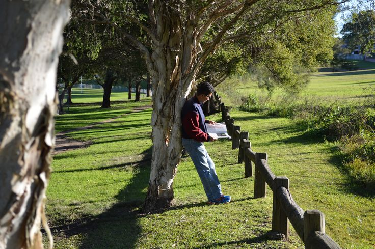 Via Dally G. on website. Favourite place, ELS Hall Park in North Ryde, NSW (June 2014) #rydenseek