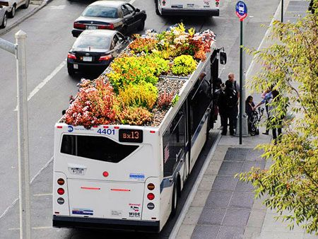 mobile green roof!: Buses, Rooftops Gardens, Idea, New York Cities, Greenroof, Roots, Green Roof, Roof Gardens