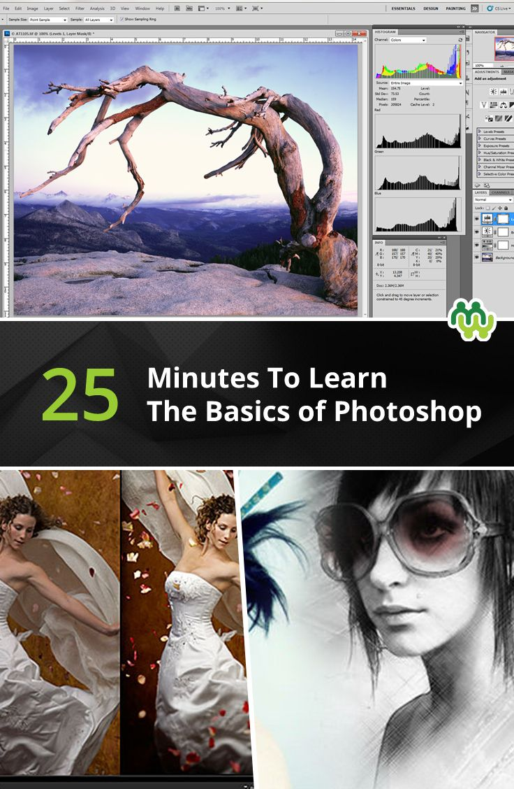 15 Useful Video Tutorials to Learn Photoshop: Learn the Best!