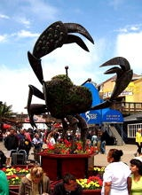 "tripYIP.com - ""Fun Things To Do!"" loves SAN FRANCISCO, CA:  ISHERMAN'S WHARF PIER 39  One of the busiest and well known tourist attractions in the western United States, Fisherman's Wharf is best known for being the location of Pier 39, San Francisco Maritime National Historical Park, the Wax Museum at Fisherman's Wharf, Forbes Island and restaurants and stands that serve fresh seafood, most notably Dungeness crab and clam chowder served in a sourdough bread bowl."