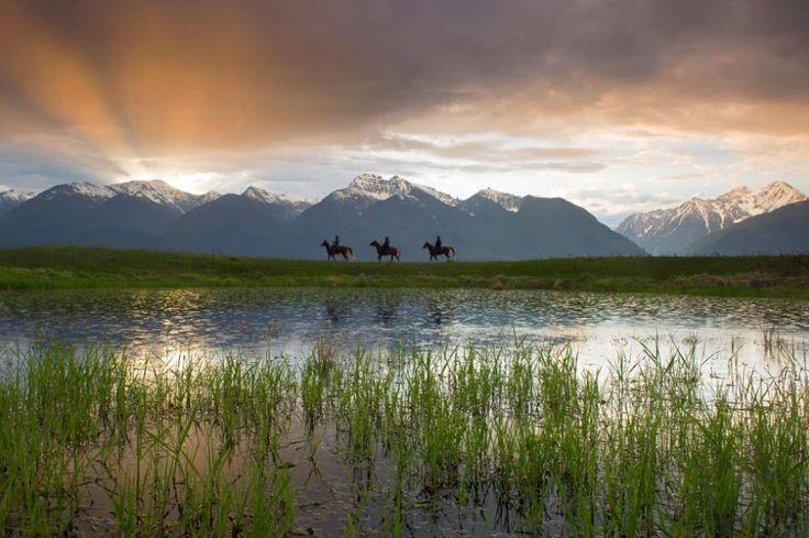 Zobacz najlepsze zdjęcia tego roku! Wybór National Geographic (27 zdjęć)