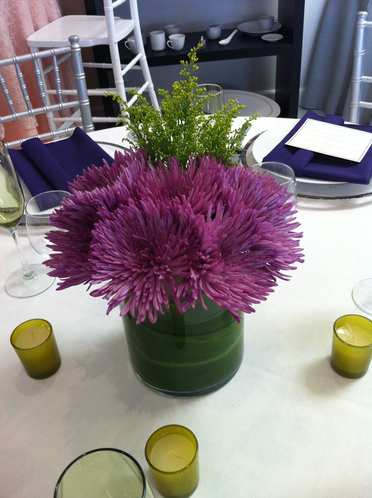 White Spider Mum Centerpiece : Best spider mums ideas on pinterest unusual flowers