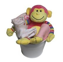 Cheeky Monkey Gift | http://www.flyingflowers.co.nz/cheeky-monkey-with-clothing-gift-2