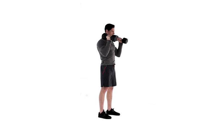 Rosca martelo com elevação : Bíceps, Ombros - MSN Saúde e Bem-estar
