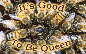 Queen Honey Bees