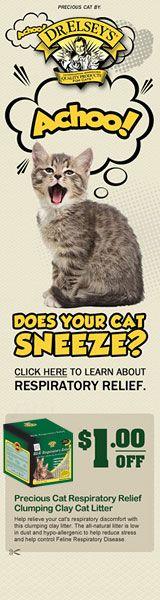 Cat Breeds - List of Cat Breeds - Cat Breed Information