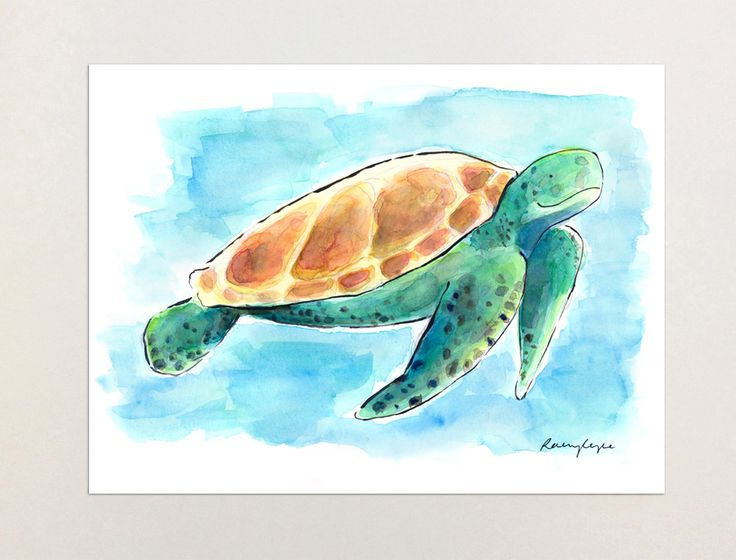Walter the Turtle - A4 Print of Orginial Watercolour Painting