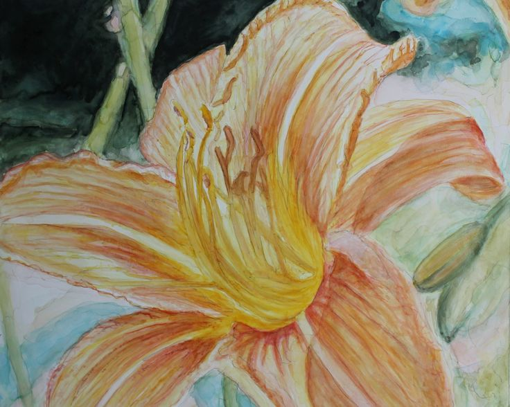 watercolour by christine beattie