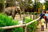 Jardim Zoologico. Turismo em Buenos Aires