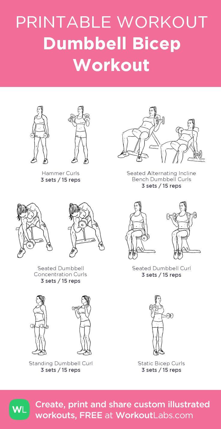 Best 25+ Dumbbell bicep workout ideas on Pinterest ...