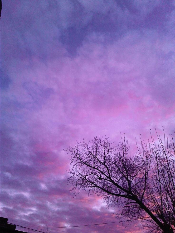 Припяти, картинки в фиолетовом цвете тамблер