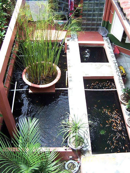 15 ide desain kolam ikan minimalis modern 1 ops garden for Koi pond design layout