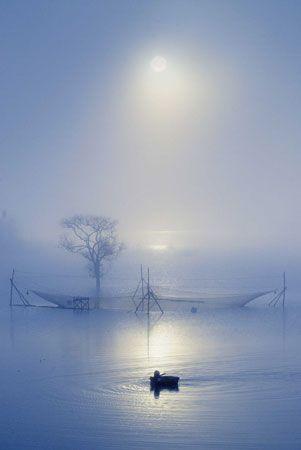 ♂ Silence nature Misty Morning blue