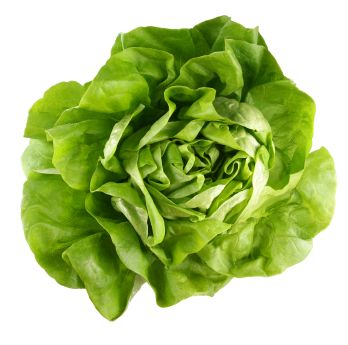 Sałata - zawiera luteinę i zeaksantynę, silne przeciwutleniacze, które chronią przed wyrodnieniem plamki żółtej. Właściwości sałaty pozwalają wzmocnić system nerwowy, poprawiają trawienie i odkwaszają. Sałata dostarcza kwasu foliowego i witamin z grupy B, witamin E i C, potasu, żelaza, manganu, magnezu, kwasów organicznych.
