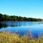 Old cranberry bog, Purple Heart Trail, Bunker Hill Bogs | Jackson, NJ | OutdoorJerseyMom.com