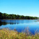 Old cranberry bog, Purple Heart Trail, Bunker Hill Bogs | Jackson, NJ | OutdoorJerseyMom.com
