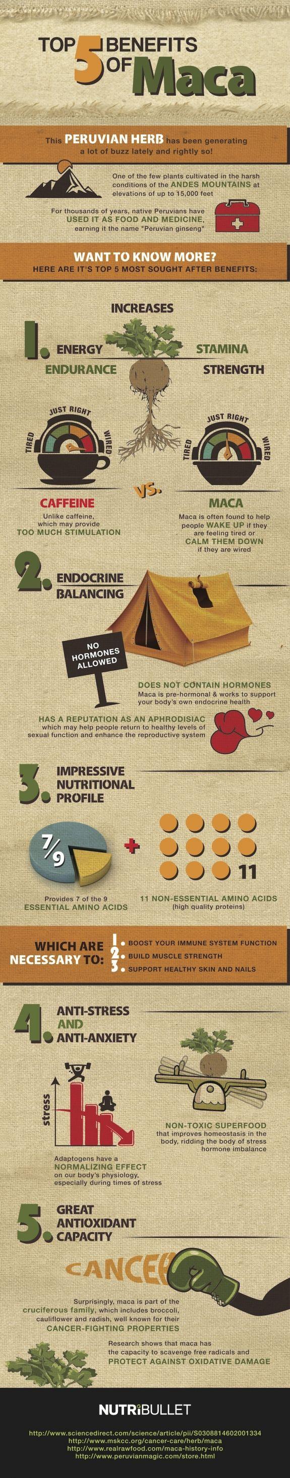 Top 5 Benefits of Maca [infographic]