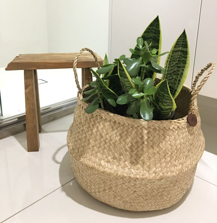 Our Vietnamese Rice Baskets make beautiful planter baskets 🍃