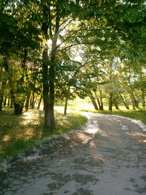 Park of Chisinau,,Dendrarium,,
