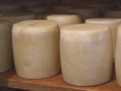 Λαδοτύρι Μυτιλήνης - ΠΟΠ - Oil cheese from Lesvos POD