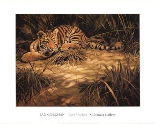 Ian Coleman Tiger Mischief Open Edition