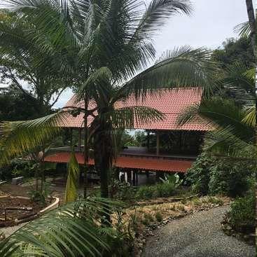 Workaway in Costa Rica. Jungle Lodge and Yoga Retreat Center in Puerto Viejo, Costa Rica