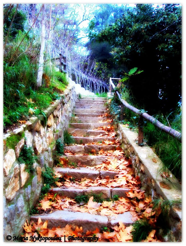 """The """"Path of Life"""", Old Town of Xanthi, Greece."""