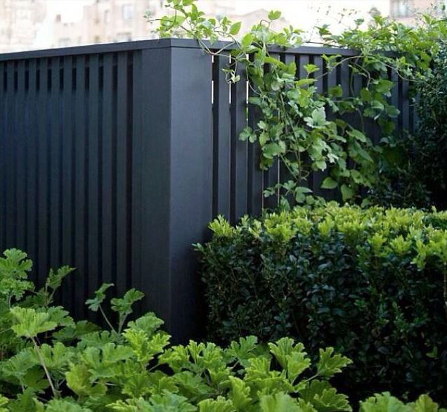 Charcoal fence!!! Love cleaner contemporary design!
