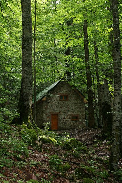 Stone house deep in the forest..with a red door, too cool.