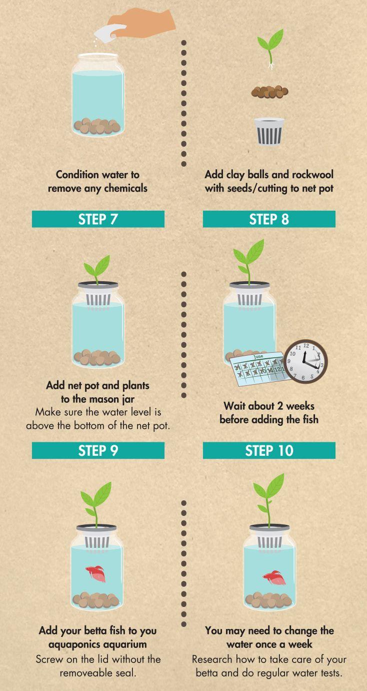 Easy Diy Herb Garden