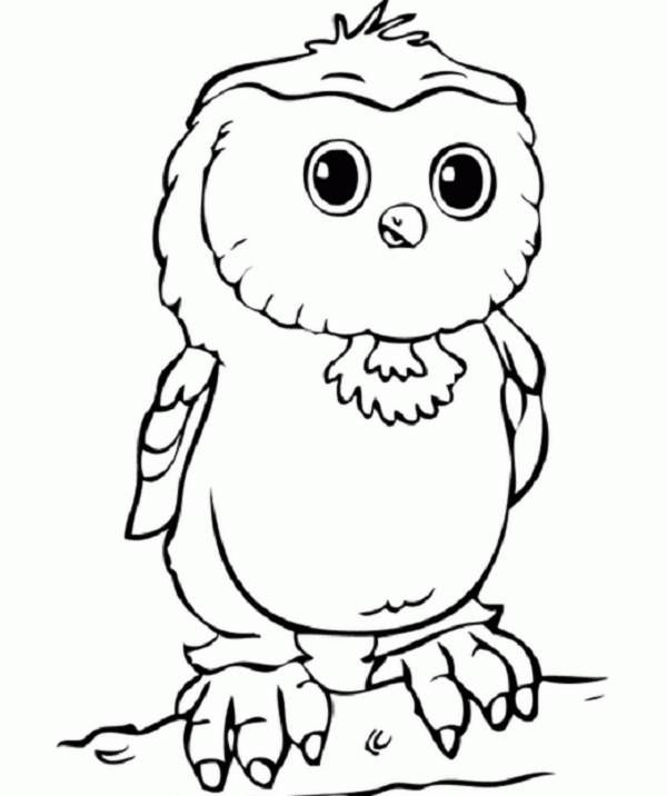 32 best Free Owls to Color Owl Worksheets Schoolfy images on