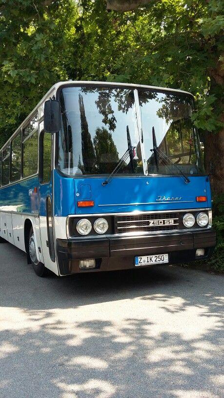Ikarus Z50 59 Bus