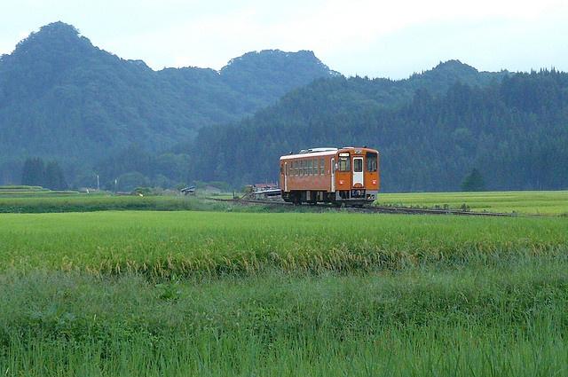 Akita Nairiku Railway  orange train by rosyamei, via Flickr