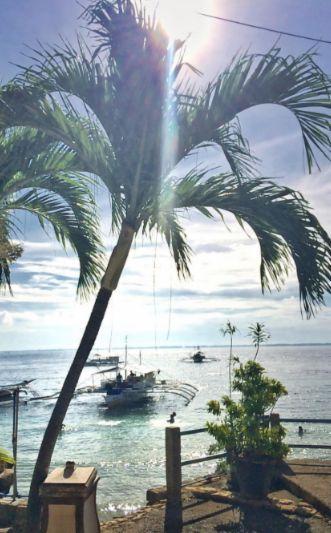 Parce que le bonheur c'est ça: des palmiers, un océan et de la plongée  Quoi avoir besoin de plus? <3