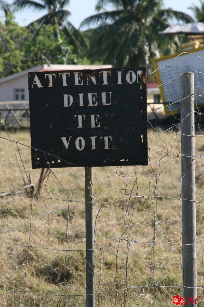 Du côté de la Baie des Mulets #Martinique © AliZéMédia