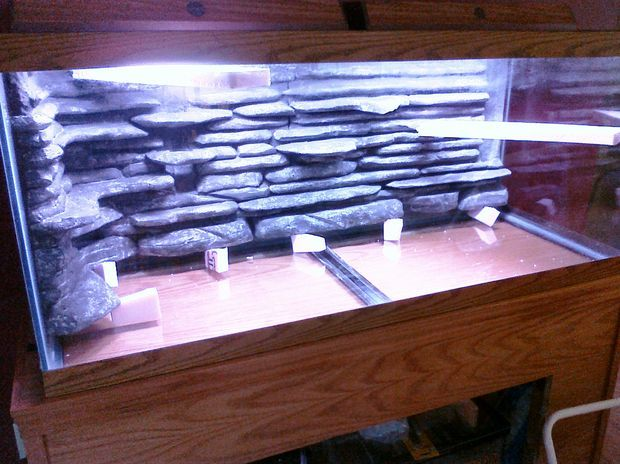 This instructable will show you how to make a cool 3D background that goes inside your aquarium and looks like real rock but only weighs less then a couple of pounds.