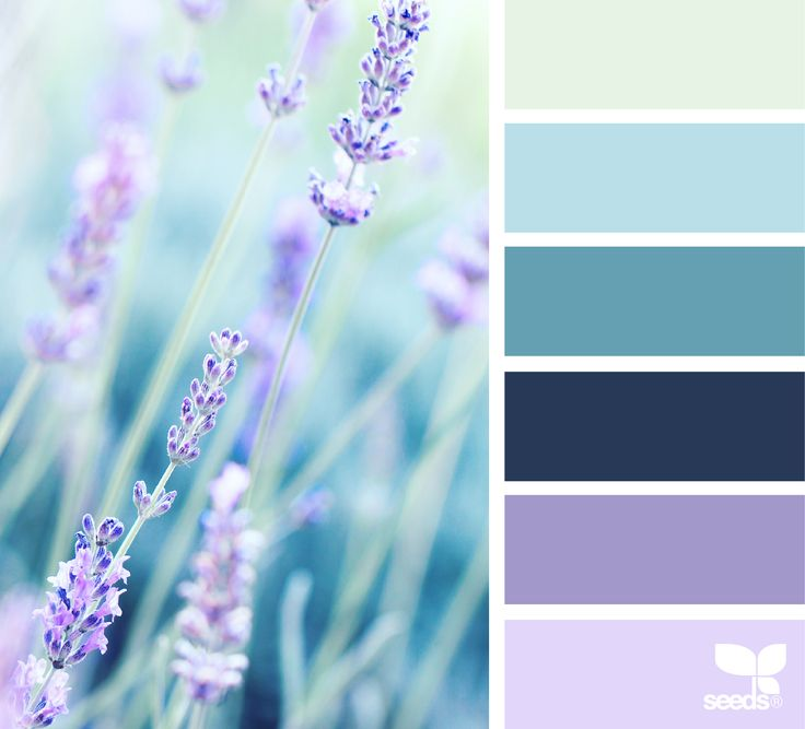 { color field } image via: @derkleineklecks  #color #palette #colorpalette #pallet #colour #colourpalette #design #seeds #designseeds