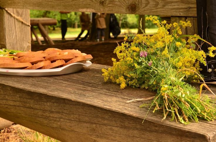 breakfast and flowers in Katarinka- Dechtice- Slovakia (foto Meshi)