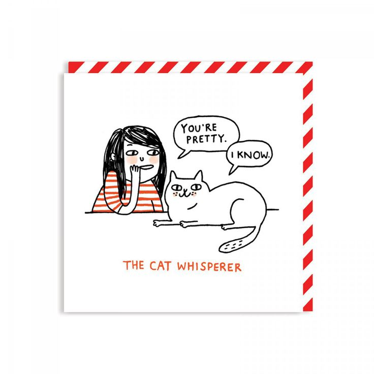 Gemma Correll Cat card