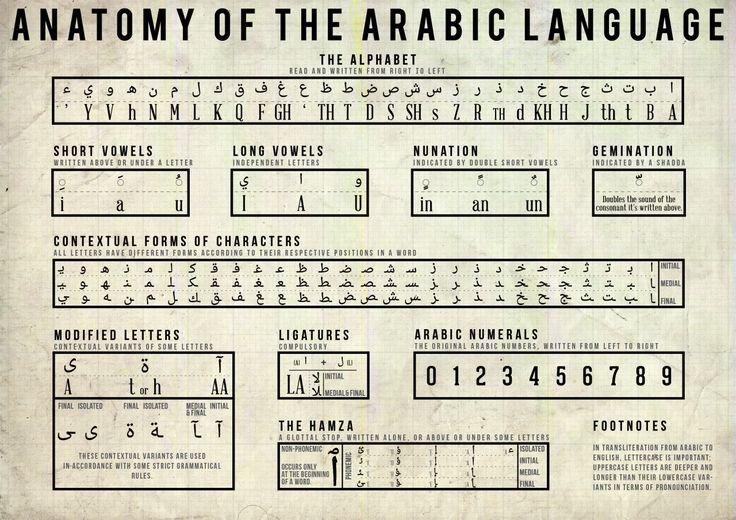 Arab Swag : Photo